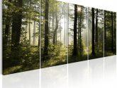 Pětidílné obrazy na stěnu - 5 dílný - Obrazy na zeď