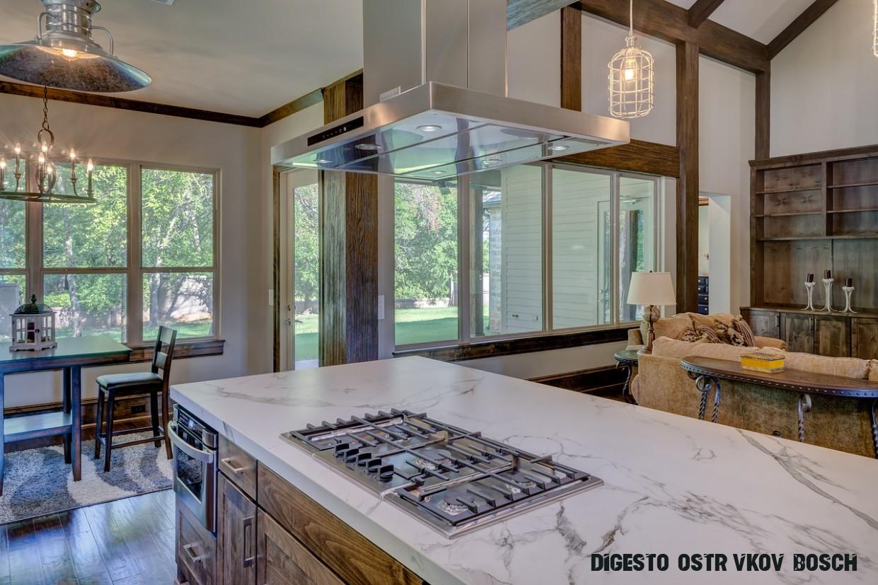 Ostrůvkové digestoře: Recenze 12 nejlepších stropních digestoří (12)