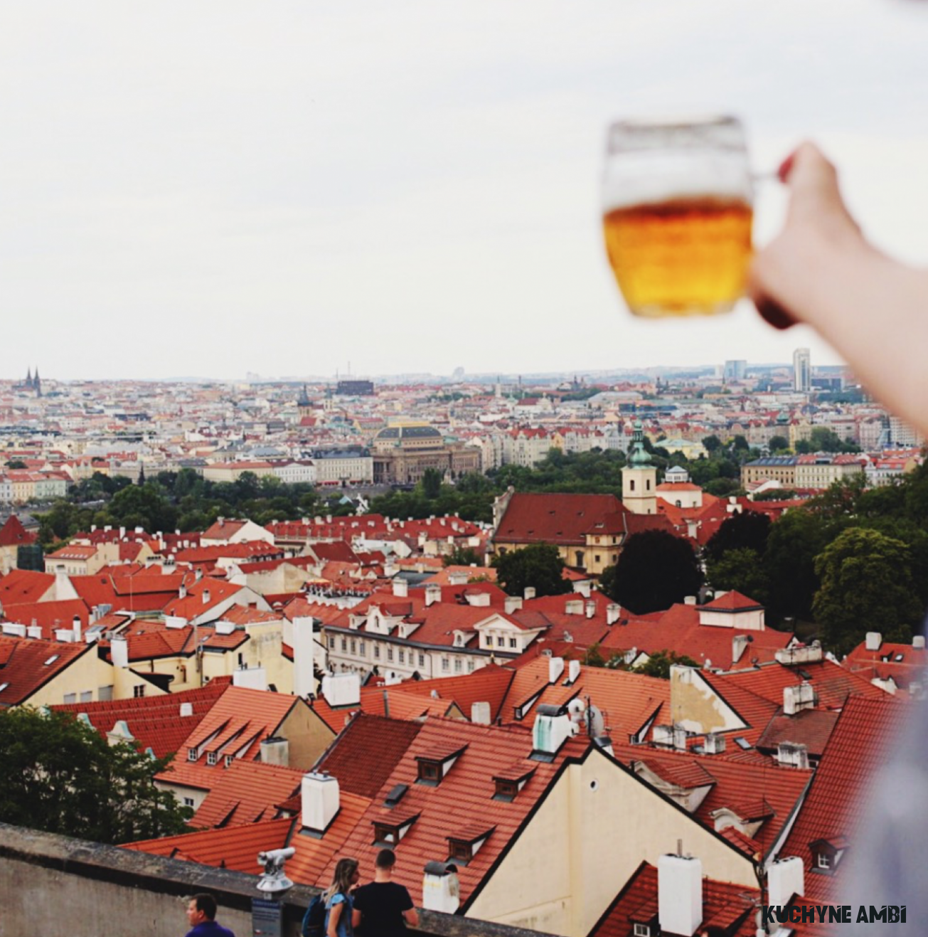 19 Nejvíce z Kuchyně Ambi in 19  Alcoholic drinks, Wine, Rose wine