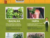 17 Príklad Idea pro Čerstvé Bylinky Do kuchyně