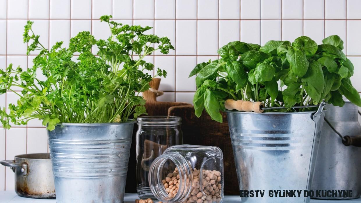 Nekupuj ich! Poradíme ti, ako si vypestovať bylinky v kuchyni